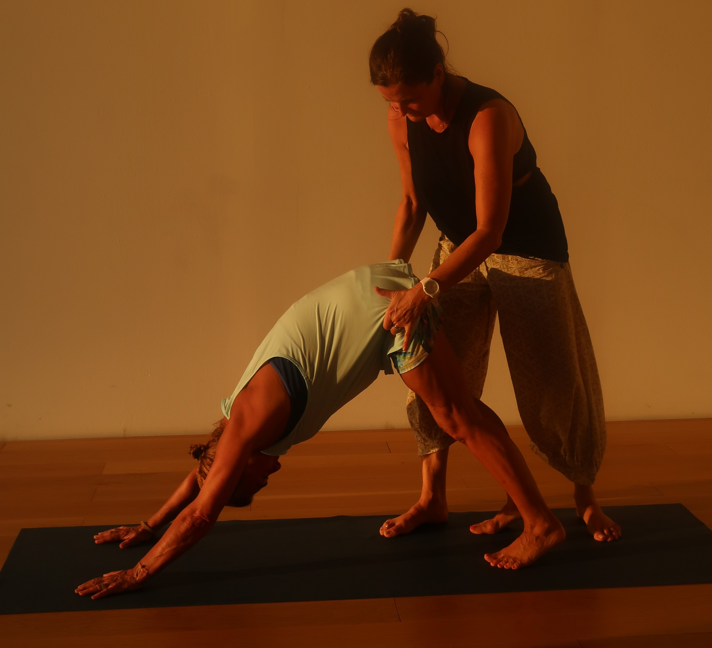 Elements of Alignment: Finding Stability and Ease  Fully Booked - Jane  Macpherson Yoga